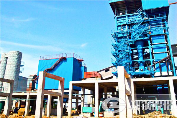 江西赣州50吨锅炉项目